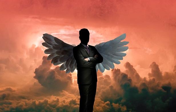 conheça o investidor anjo