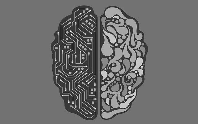 Entenda o que é Neuroplasticidade?