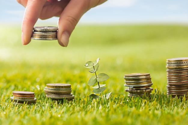 Wealth Management — O Que é A Gestão Patrimonial e Como Saber a Hora de Contratar